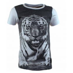 T-Shirt Manches Courtes RG512